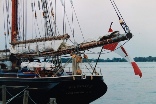 Tall ship Bluenose II photo