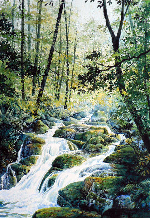 Canadian Forest creek waterfall landscape painting