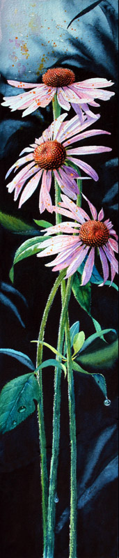 Purple Cone Flower Echinasea Painting Garden Art