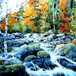 polliwog creek in the woods painting