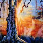 sunset behind a weeping willow tree