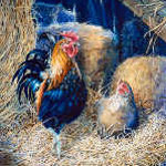 rooster and hen farm animal paintings