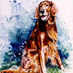 Irish Setter portrait painting