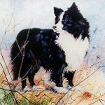 watercolor pet portrait artist
