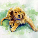 Pet portrait painting of Labrador retriever puppy